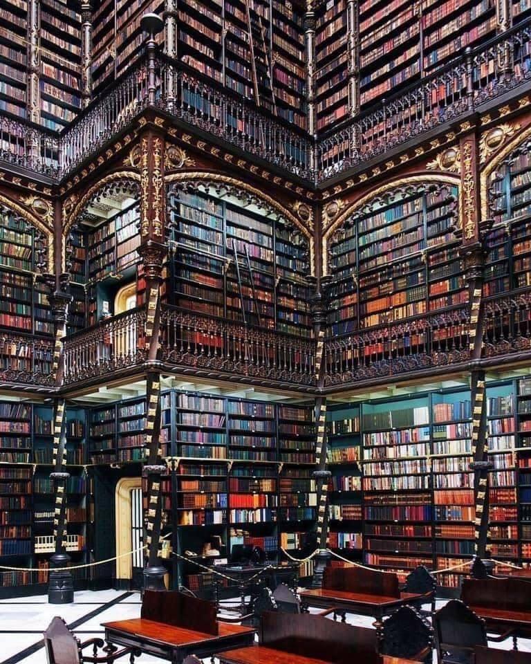 Lindas bibliotecas ... perfeitas para um domingo 4