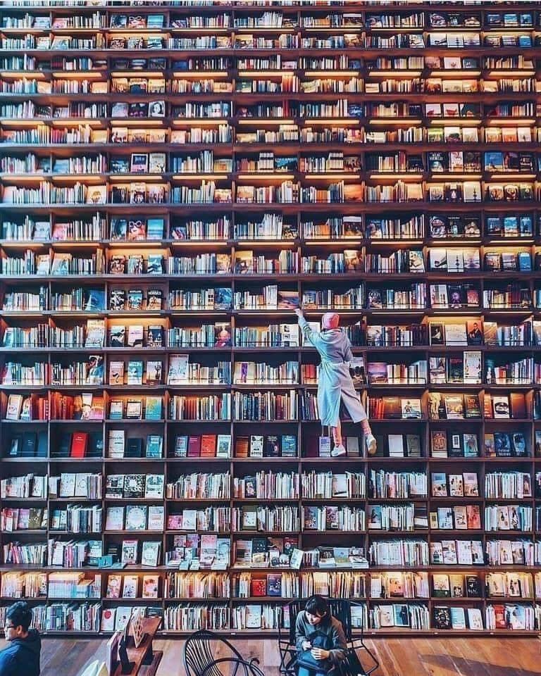 Lindas bibliotecas ... perfeitas para um domingo 2
