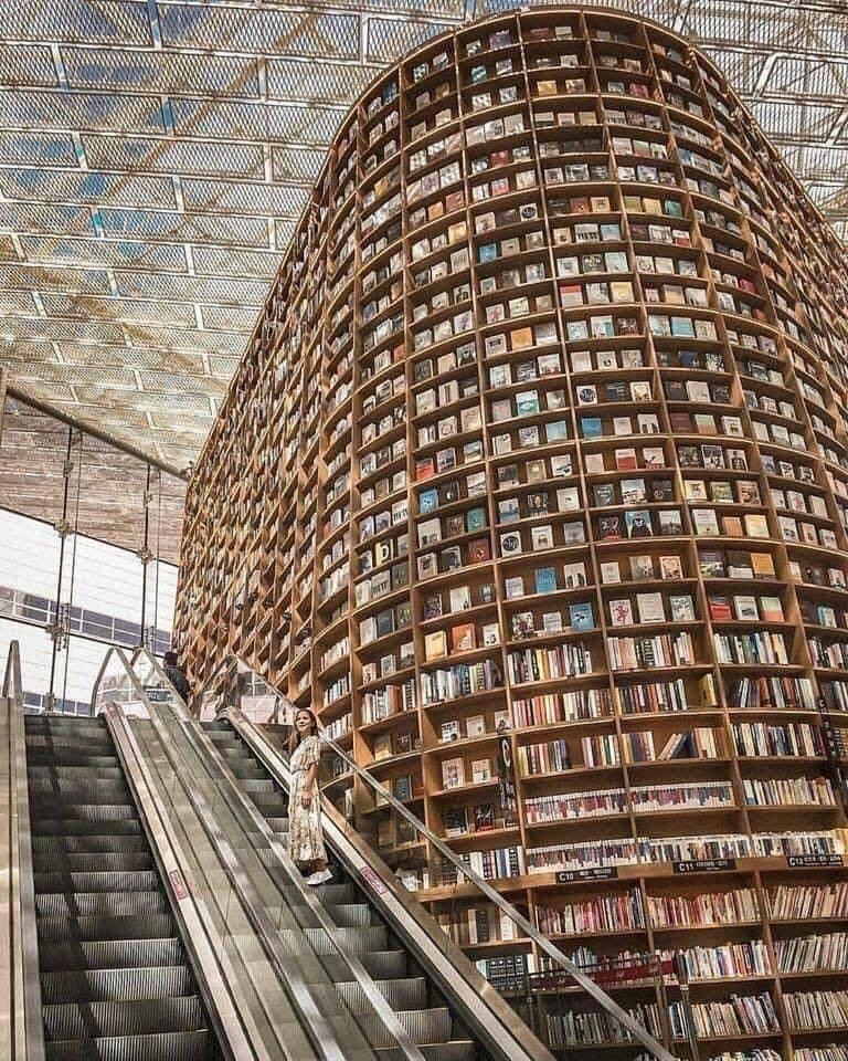Lindas bibliotecas ... perfeitas para um domingo 1