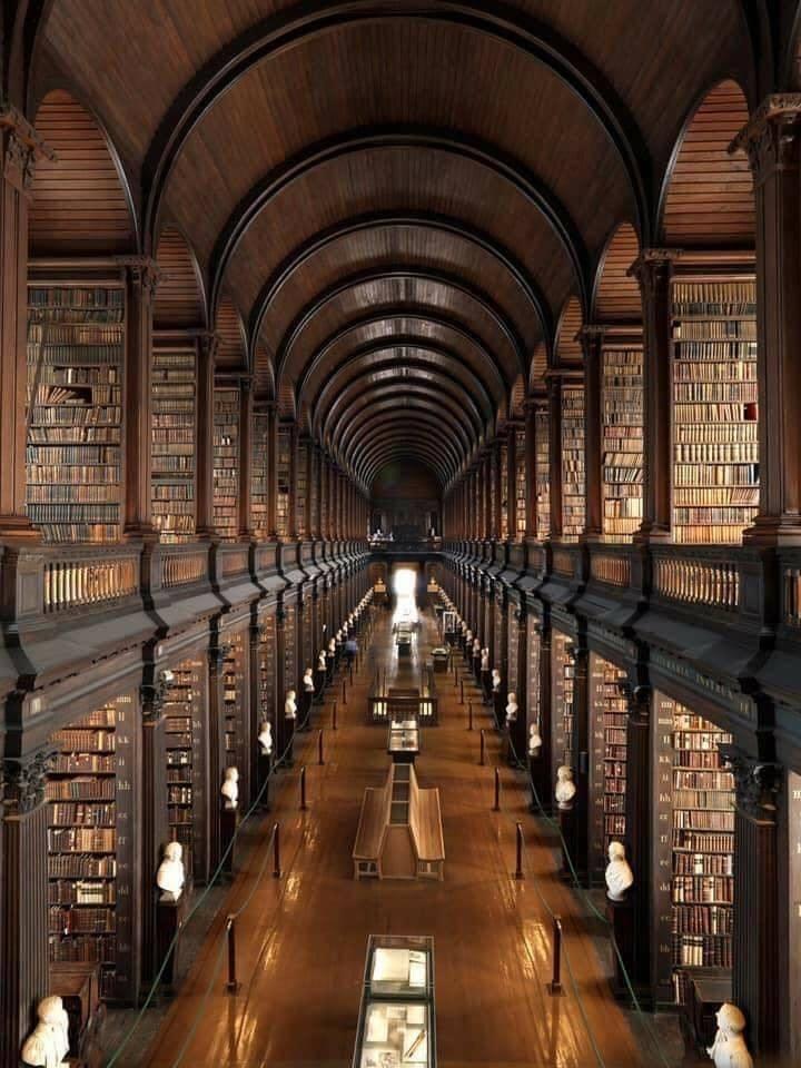 Lindas bibliotecas ... perfeitas para um domingo 5