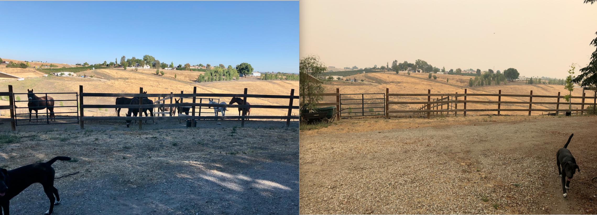CALIFÓRNIA está em chamas. Nós estamos bem. 4
