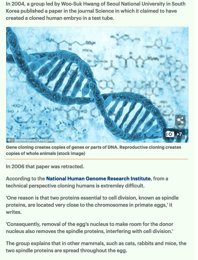 Cientistas clonam cavalos selvagens pela primeira vez usando amostras de DNA de 40 anos para ajudar a salvar as espécies ameaçadas de endogamia 9