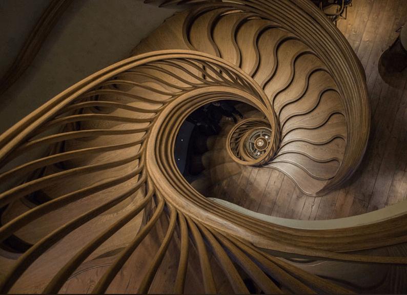 Incrível escadaria escultural de madeira em Londres, fotografia de Alex Haw 3