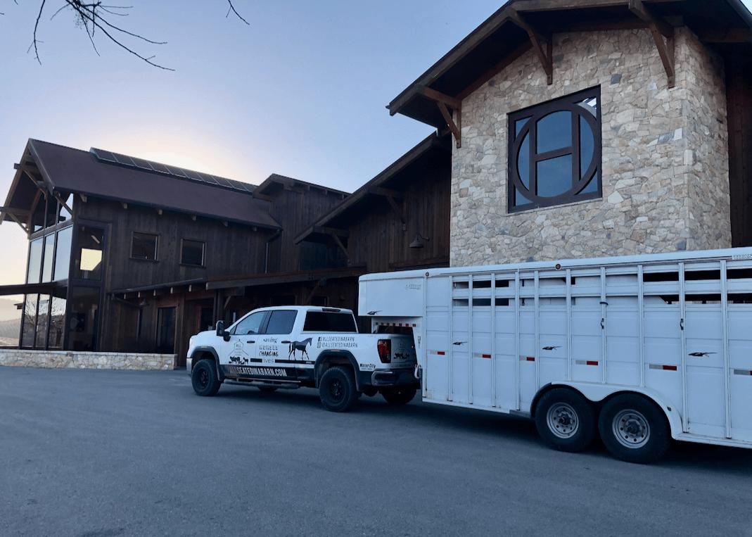 A SURPRESA!  Quatro burros BLM antes selvagens encontrados em um matadouro no Texas, foram libertados de volta à liberdade hoje na Halter Ranch Winery. 5