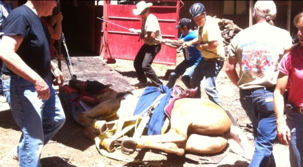 The Anderson Glide being used to rescue a horse (used by the same folks who just rescued the 41 Virginia Range Horses).