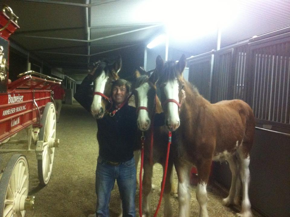 On set with his horses...