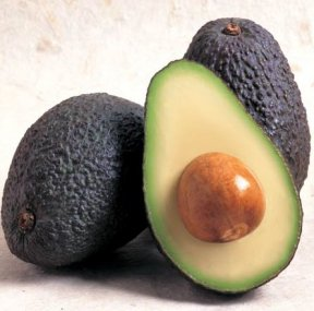 Yummy avocados are POISON to livestock.