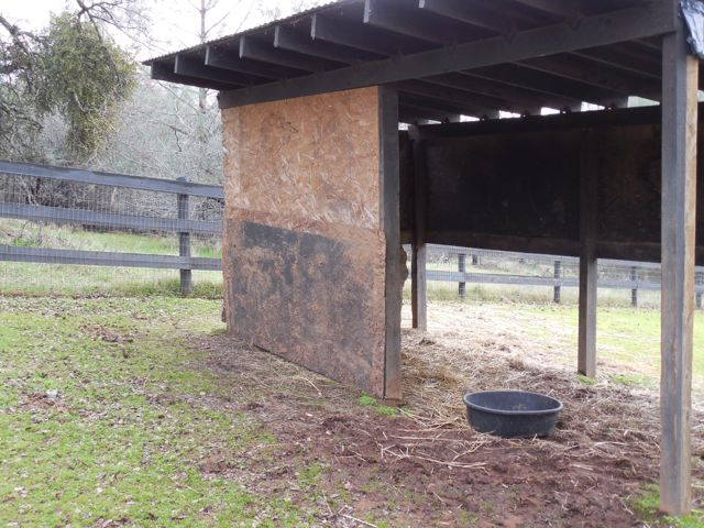 This is the ugly but useful job I did in retrofitting Bodhi's shelter to fit little Slick.  I used my girly Makita to drill in the board that had been on the ground - yes, I admit it, we had a sheet of plywood out in one of the fields.  My bad.  But, it came in handy!