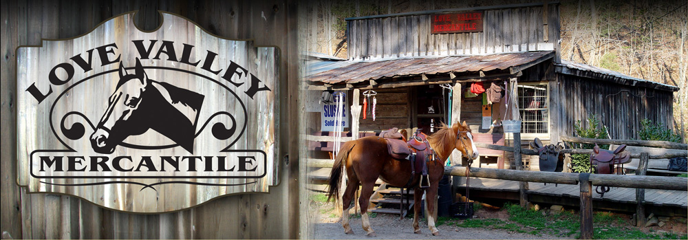 LOVE VALLEY, NC... A Place for Horseback riding!: No cars ...