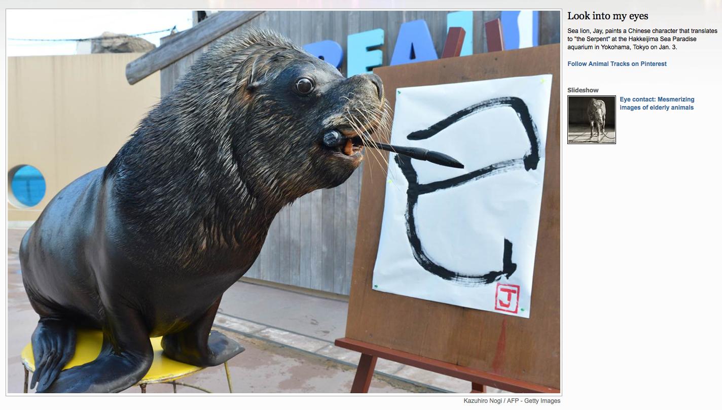 smarty sea lion!