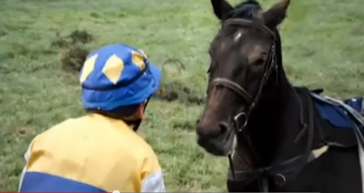 I love the voice they gave the horse on this one... Click image to watch.