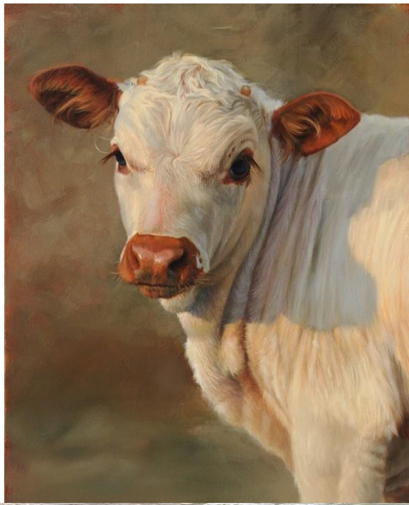 Screen Shot 2015 04 02 At 1 43 06 Pm: Artist TERESA ELLIOTT. You Will Never Look At A Cow The