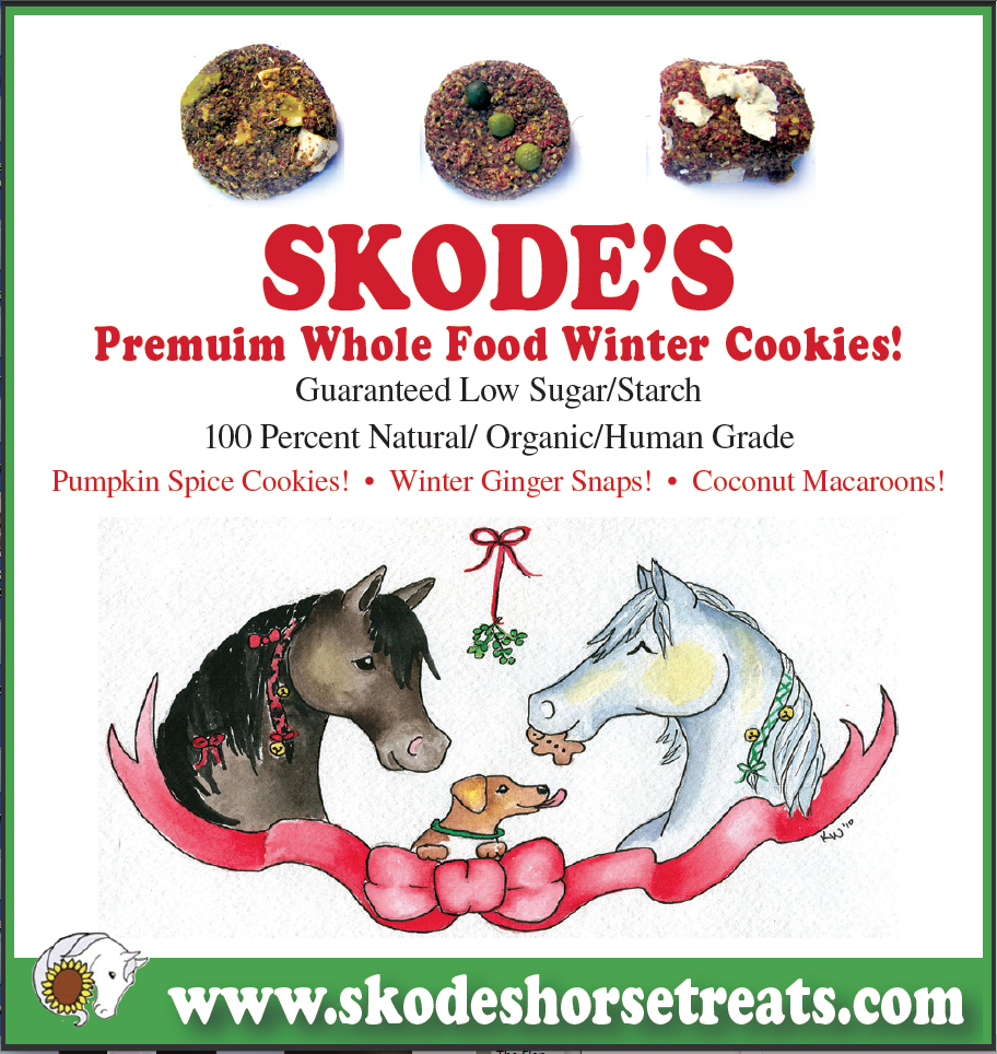 skodes holiday horse treats