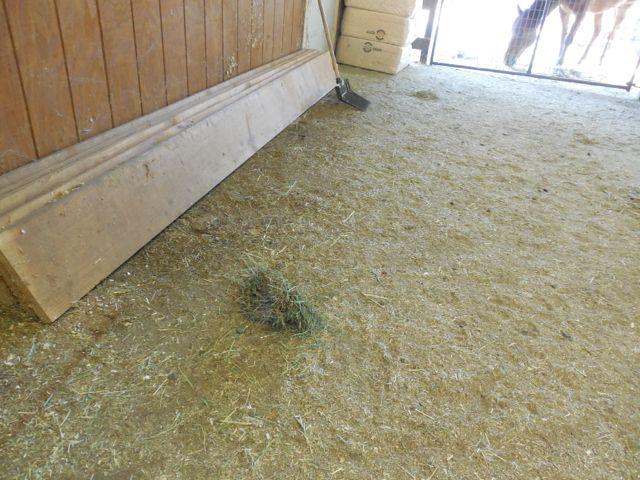 bits of hay