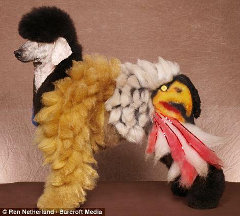 Fancy Dog Grooming