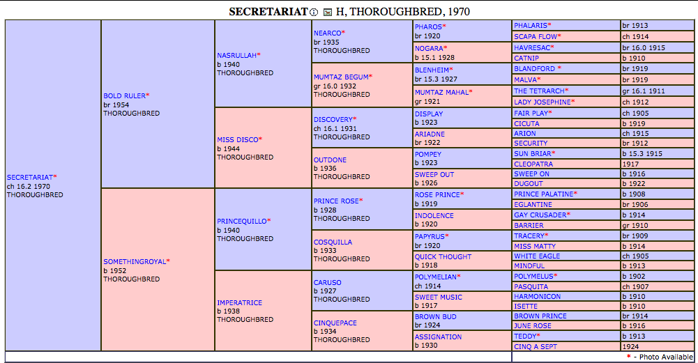 secretariat pedigree