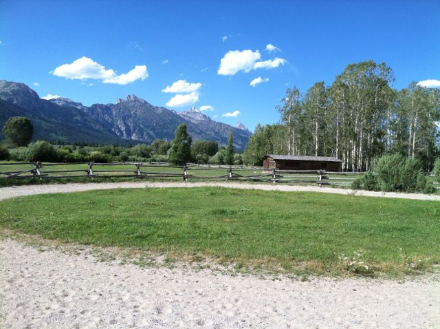 The 'prove you can trot' roundpen.  Note the scenery...