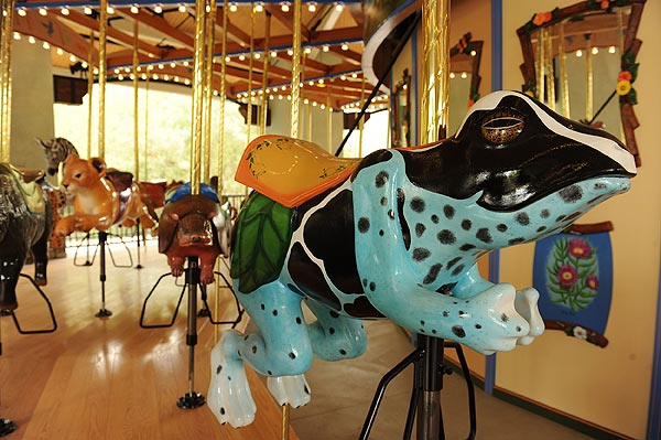 weird frog carousel